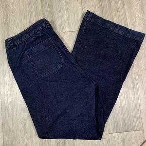 Lane Bryant Genius Fit Flare Darkwash Jeans